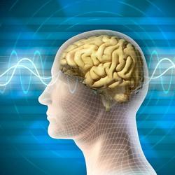 лечение головного мозга в Германии компания Рулаком