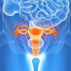 рак яичников причины и лечение в Германии компания Рулаком