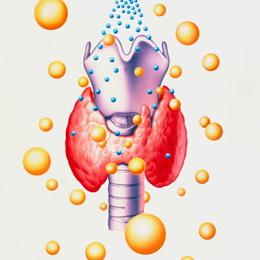 Лечение щитовидной железы в Германии компания Рулаком